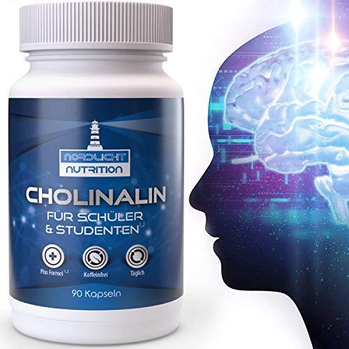 Nordlicht Nutrition® Konzentrations Tabletten² für die geistige...