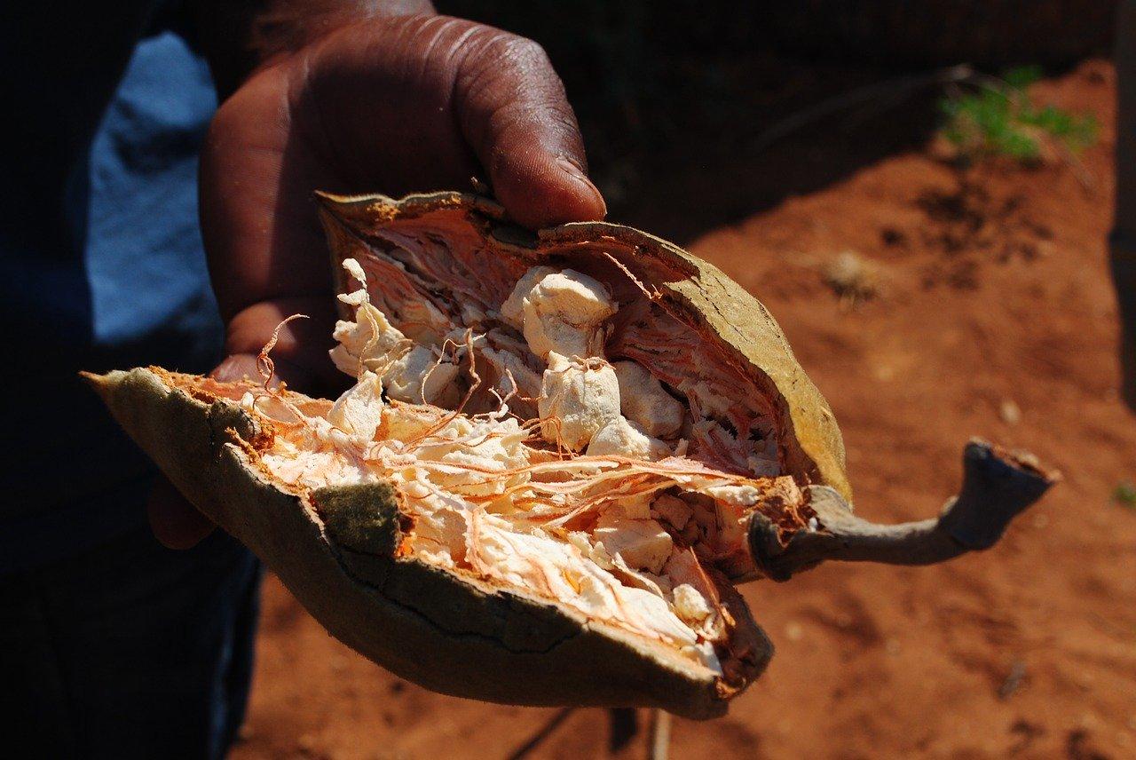 Baobab Test