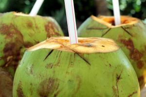 Kokosmilch und Kokoswasser