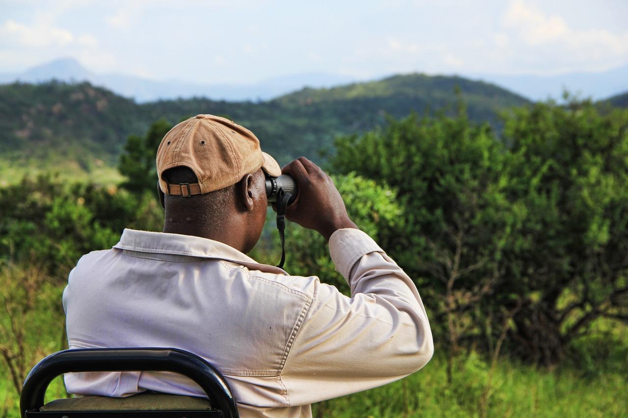 Mit einem gutem Fernglas kannst Du die Schönheit der Natur ganz nahe erleben.